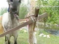 Satisfaciéndose con la verga del caballo