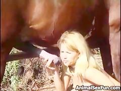 pony suck cock