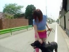Mexicana preparando el terreno para su perro