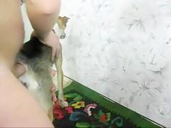 Jovencita dandole de comer almeja a su perro