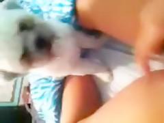 Mulata chupando polla a un perro
