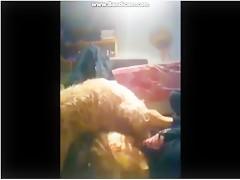 rubia guarrilla le haze un completo a perro henorme