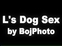 Chupa perro Chino folla