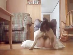 Sobre la cama ella satisface a su can
