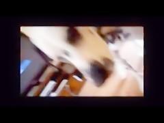 Hombre gay le da por culo un perro