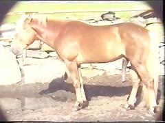 Madre e hija tragando esperma de caballo