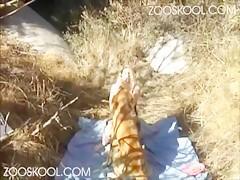 Zoofilia por la Webcam con perro