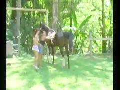 Amando al caballo
