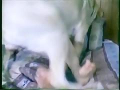 Morena Sexy y su perrito faldero