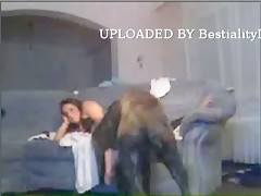 Chupando pene de perro