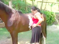 Cavalo arrebenta pregas