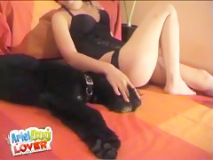 Webcam - Dog 01