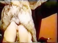 Masturbando perro del vecino pastor alemán