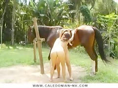 Lesbian Horse Girls