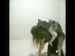 Mexzoo - Miss Fernanda teasing a horny Husky - full scene