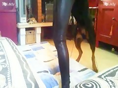 Latex for Dog